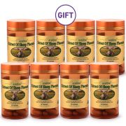Extract of Sheep Placenta - Buy 4 Get 4 Free