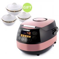 10 in 1 Digital Multicooker & gift