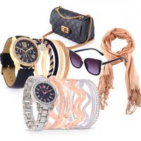 DestinyAll accessories bundle