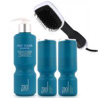Doctor's Order Hair Loss Prevention Kit & Hair Dryer