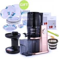 H34 Slow Juicer Gold & Gift