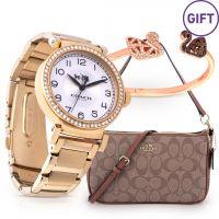 Classic Wristwatch & Gifts